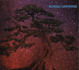 Longtime Bobby Womack guitarist, Woody Aplanalp's solo venture with Bonsai Universe and 'Moonstream'