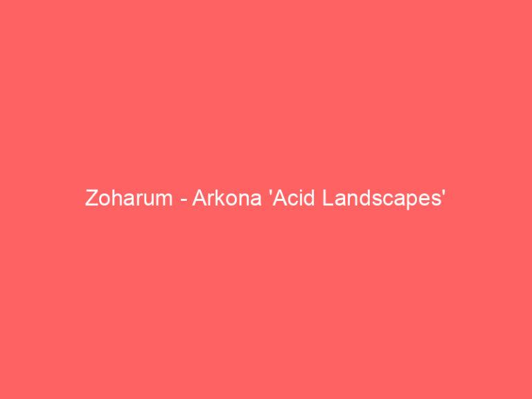 Zoharum – Arkona 'Acid Landscapes'